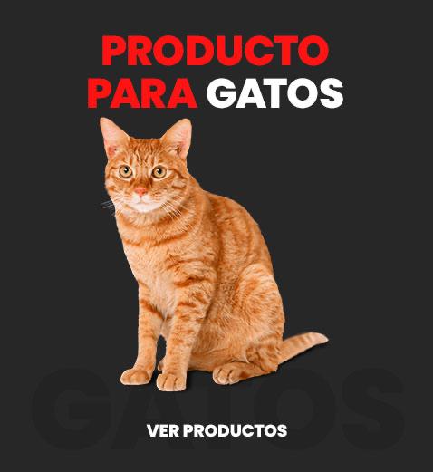 producto_gatos